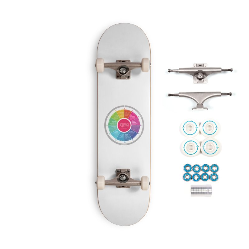 Chi Cycle Wheel Accessories Complete - Basic Skateboard by Jost Sauer Chi Cycle Lifestyle