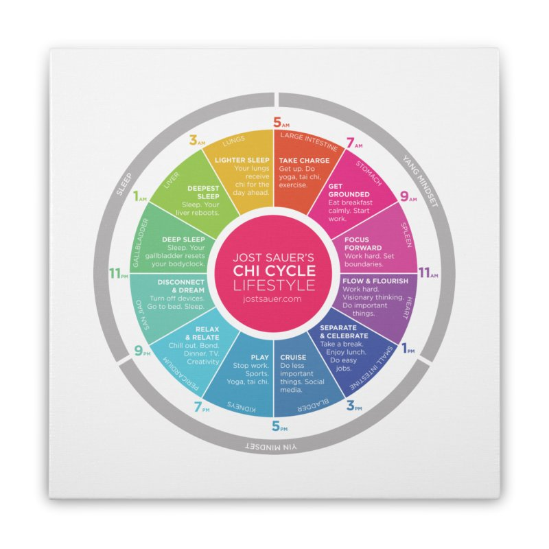 Chi Cycle Wheel Home Stretched Canvas by Jost Sauer Chi Cycle Lifestyle