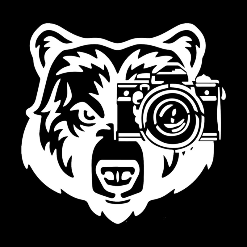 Big Bear by jpaullphoto's Artist Shop