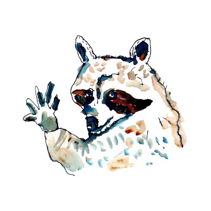 friendly racoon by julianepieper's Artist Shop