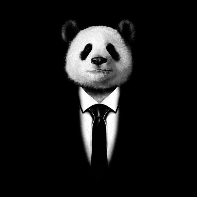 Mr. Panda  by jun21's Artist Shop