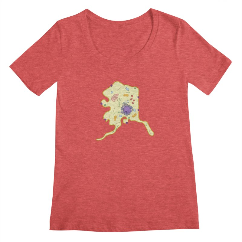 Alaskaryotic Women's Regular Scoop Neck by justintapp's Artist Shop