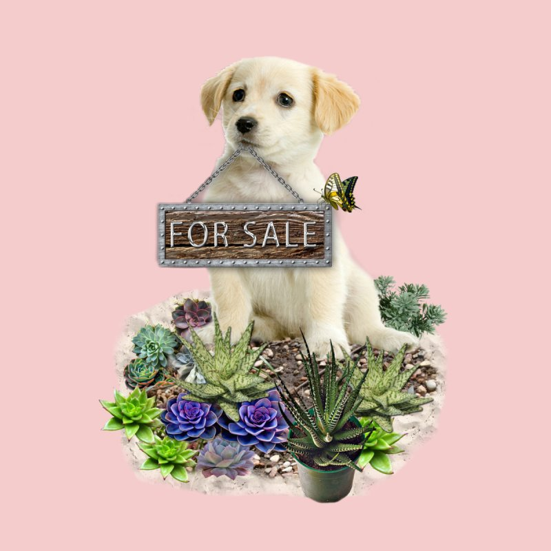 Labrador-Retriever puppy is for sale by NadineMay Artist Shop