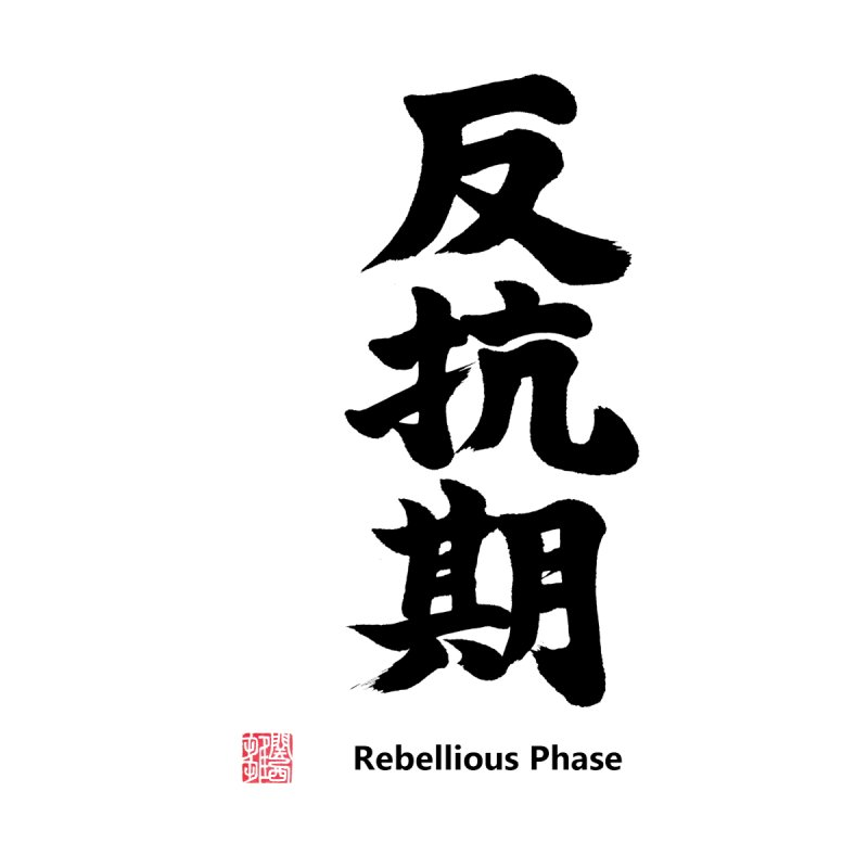 """Rebellious Phase"" (Hankouki) Black Japanese Kanji with Artist Stamp and English Text Women's T-Shirt by KansaiChick Japanese Kanji Shop"