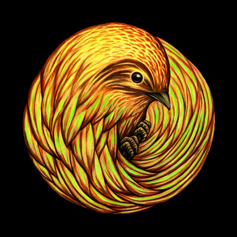 Bird Spiral   by kcarterart's Artist Shop