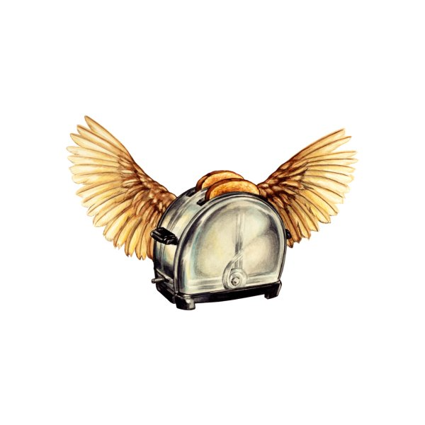 image for Flying Toaster