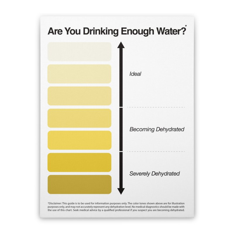Urine Color Chart, Pee Color Chart Home Stretched Canvas by Kelsorian T-shirt Shop