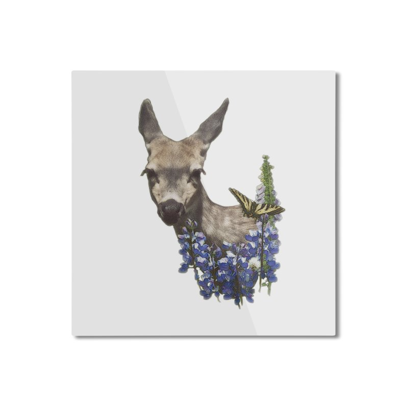 Lady of the Alpine Home Mounted Aluminum Print by Of The Wild by Kimberly J Tilley