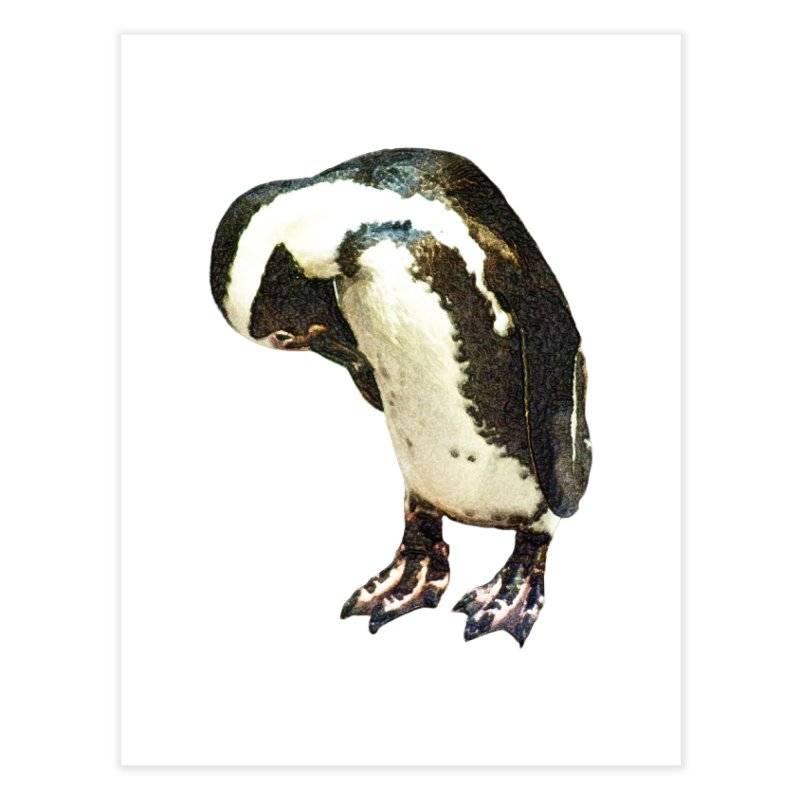 Magellanic Penguin Home Fine Art Print by Of The Wild by Kimberly J Tilley