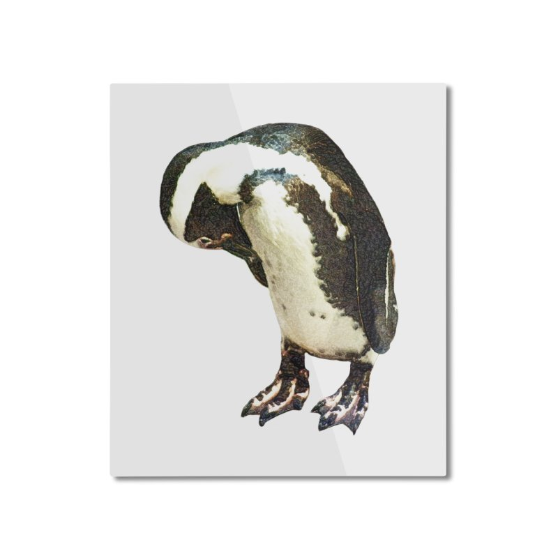 Magellanic Penguin Home Mounted Aluminum Print by Of The Wild by Kimberly J Tilley