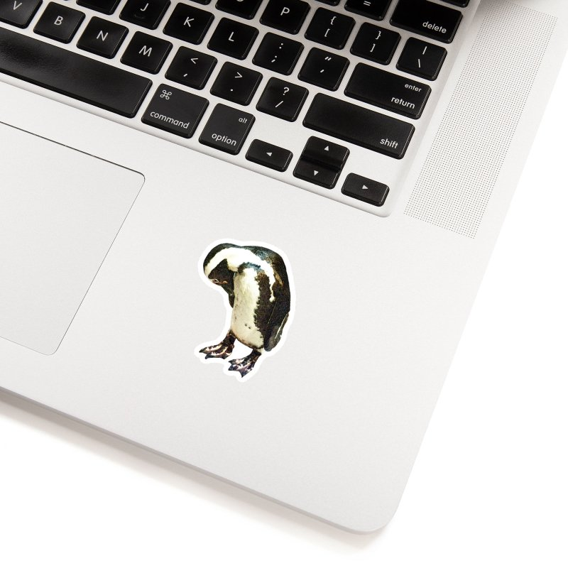 Magellanic Penguin Accessories Sticker by Of The Wild by Kimberly J Tilley