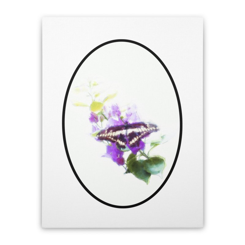 Giant Swallowtail Home Stretched Canvas by Of The Wild by Kimberly J Tilley