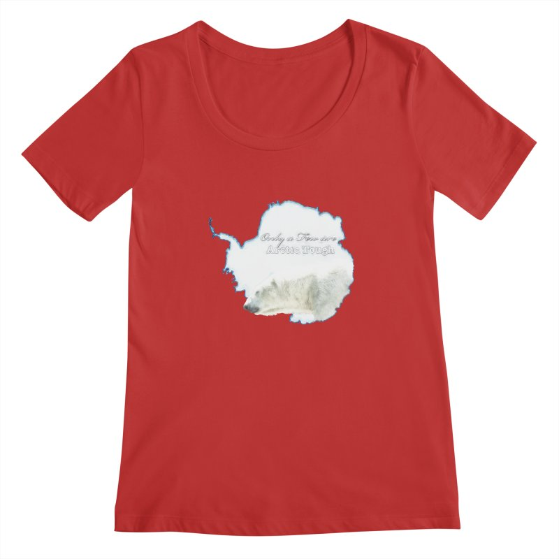 Arctic Tough Women's Scoopneck by Of The Wild by Kimberly J Tilley