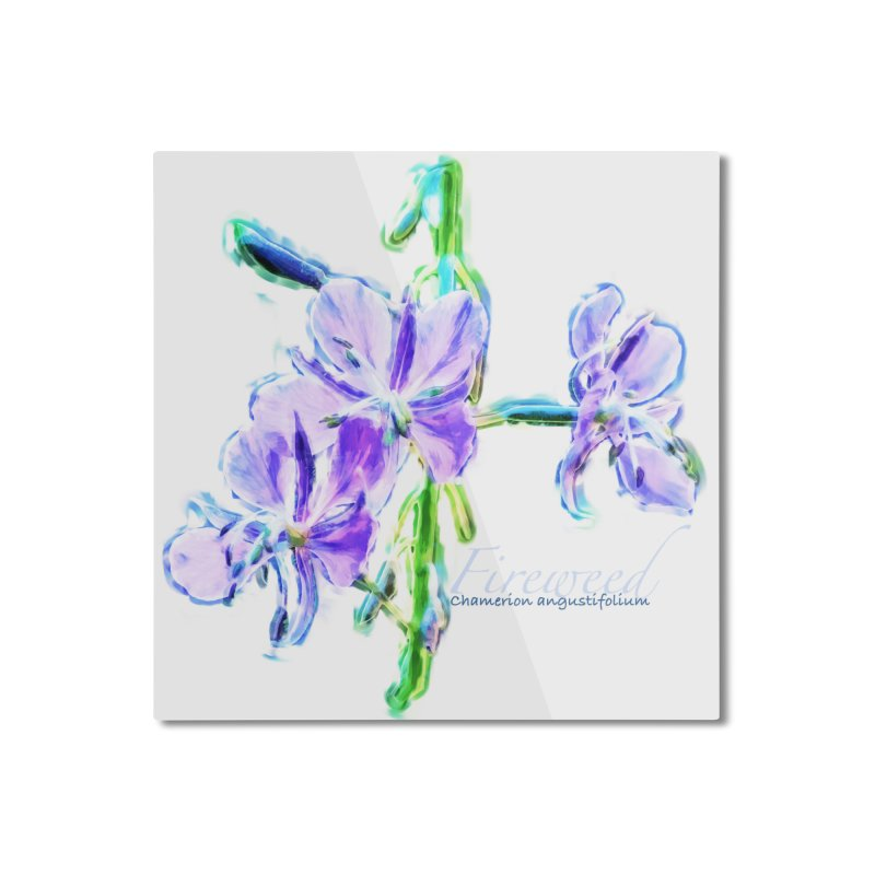 Fireweed Home Mounted Aluminum Print by Of The Wild by Kimberly J Tilley