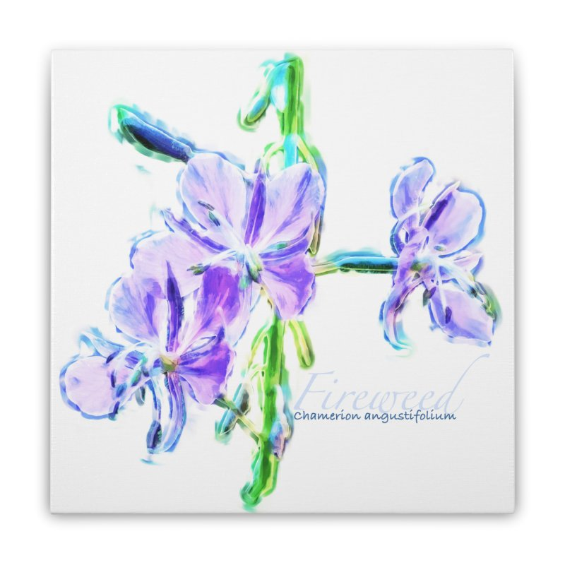 Fireweed Home Stretched Canvas by Of The Wild by Kimberly J Tilley
