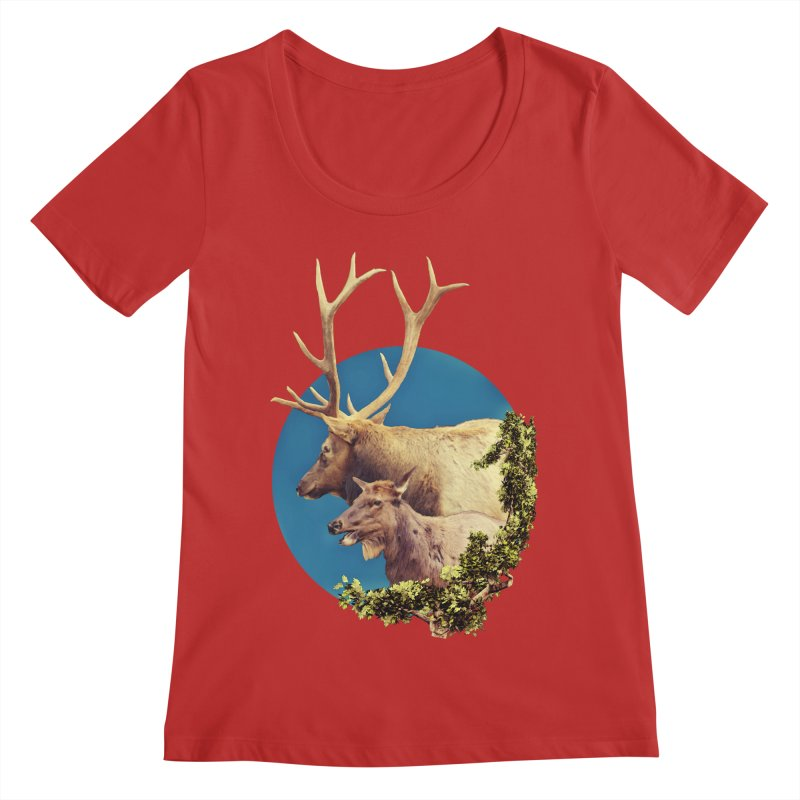 The Stag and the Hind Women's Regular Scoop Neck by Of The Wild by Kimberly J Tilley