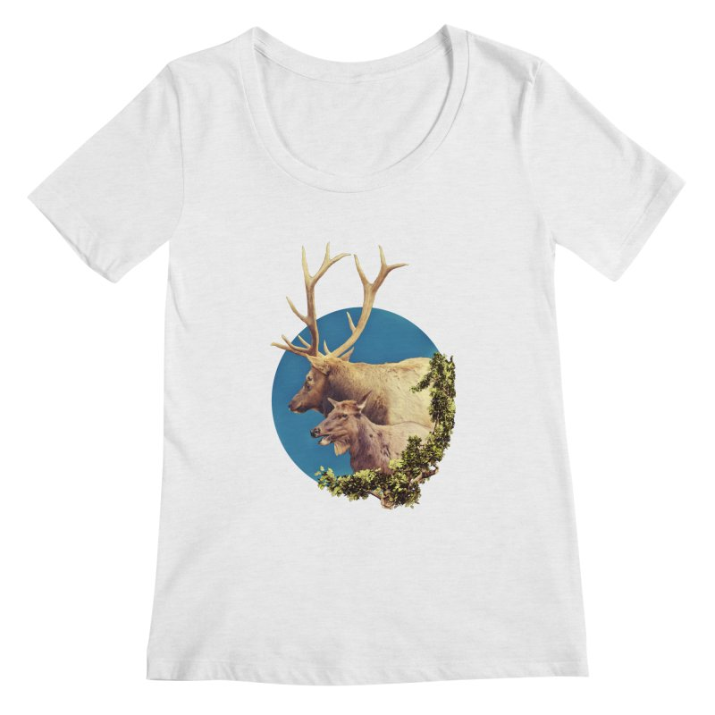 The Stag and the Hind Women's Scoop Neck by Of The Wild by Kimberly J Tilley