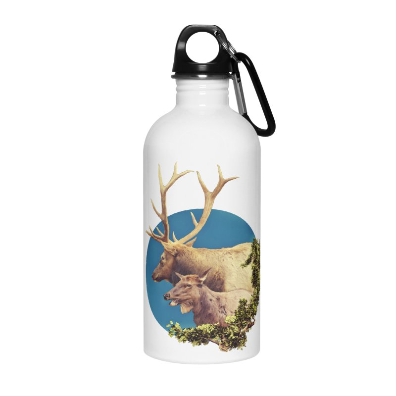 The Stag and the Hind Accessories Water Bottle by Of The Wild by Kimberly J Tilley
