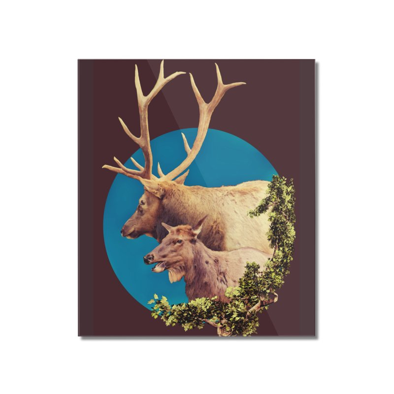 The Stag and the Hind Home Mounted Acrylic Print by Of The Wild by Kimberly J Tilley