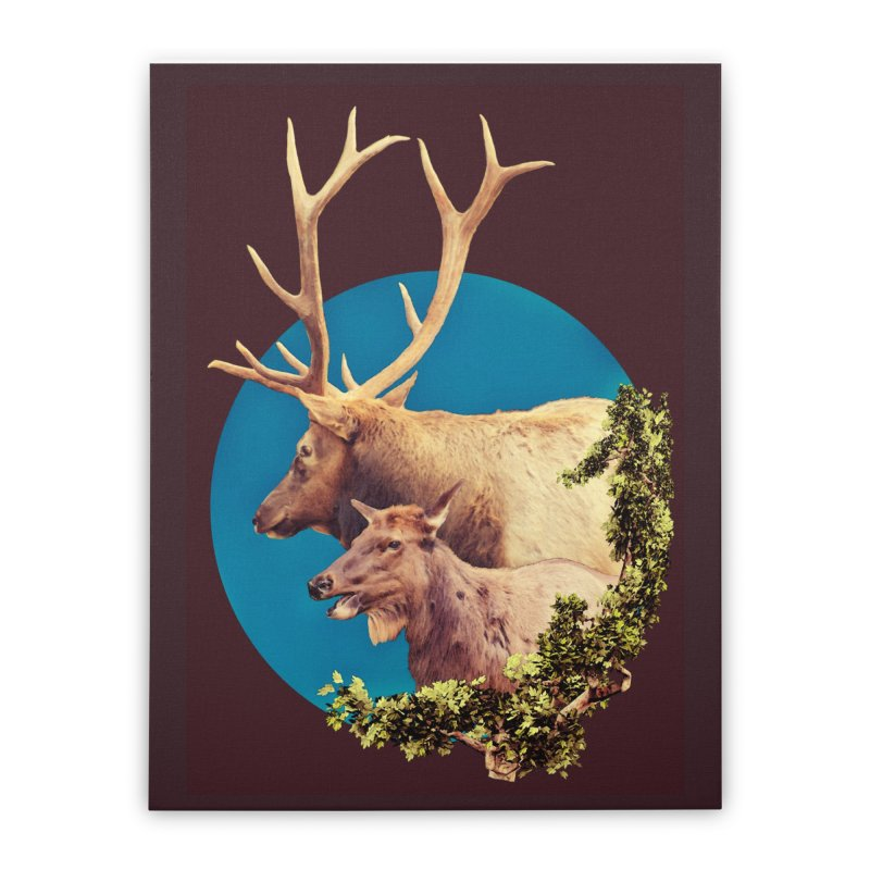 The Stag and the Hind Home Stretched Canvas by Of The Wild by Kimberly J Tilley