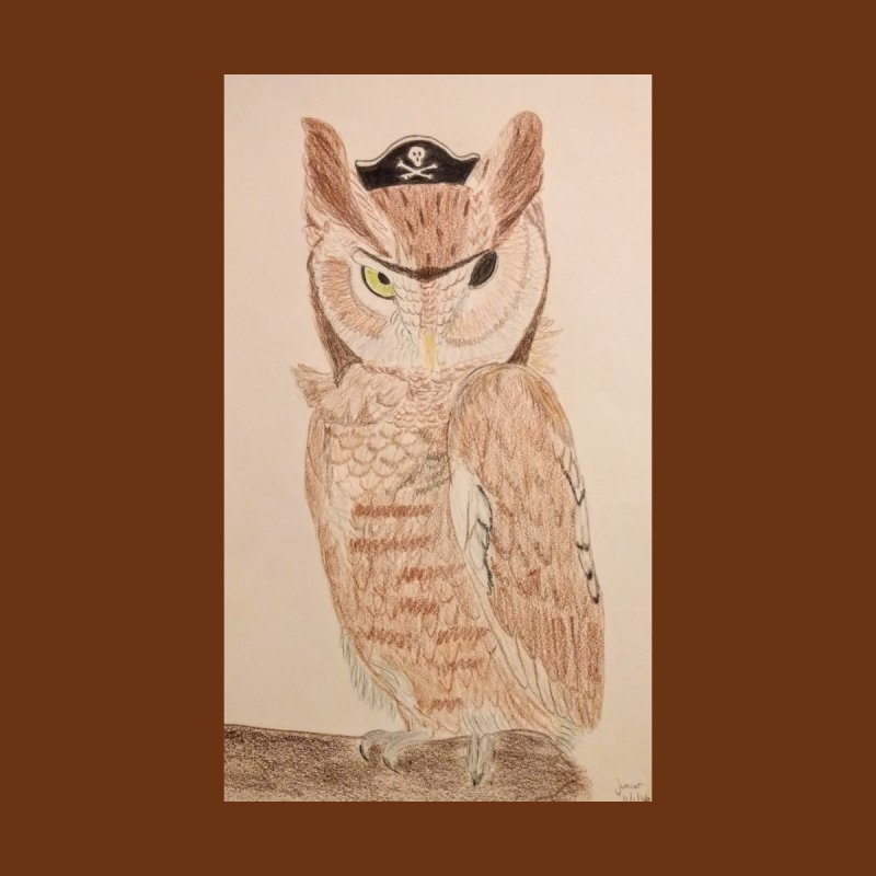 Pirate Owl by Whimsical Wildlife Wares