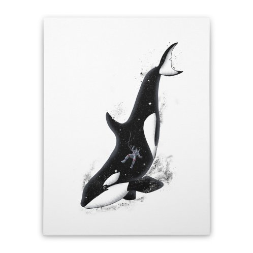 image for Meanwhile in a whale