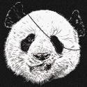 kookylove Logo