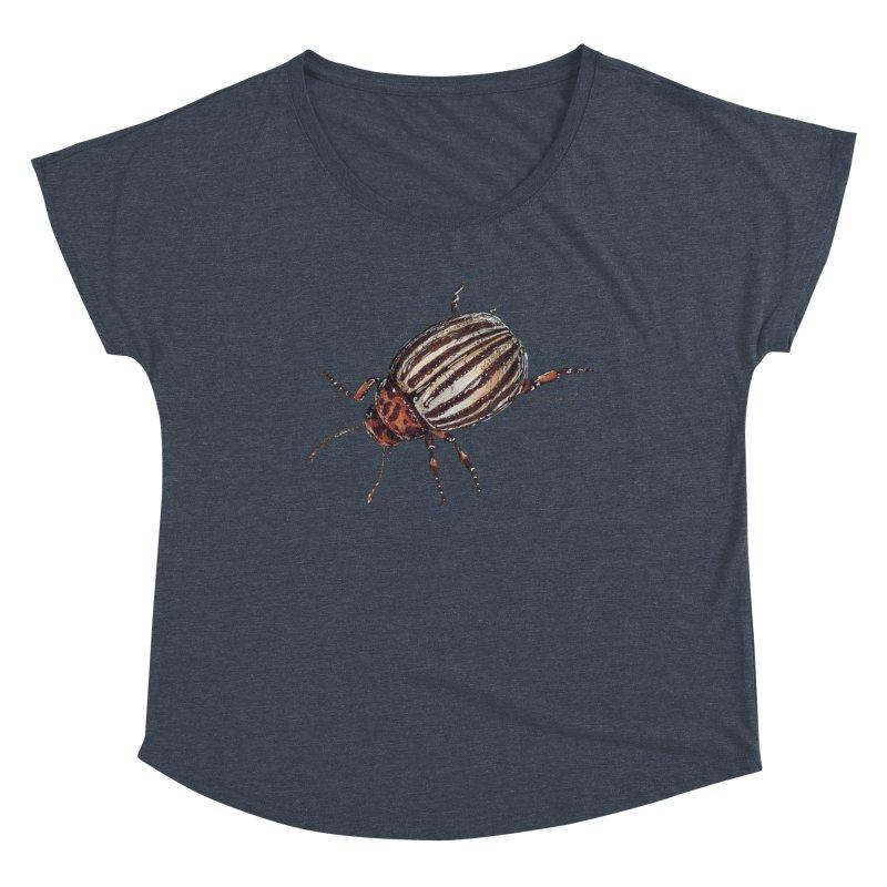 Colorado beetle Women's Dolman Scoop Neck by kouzza's Artist Shop