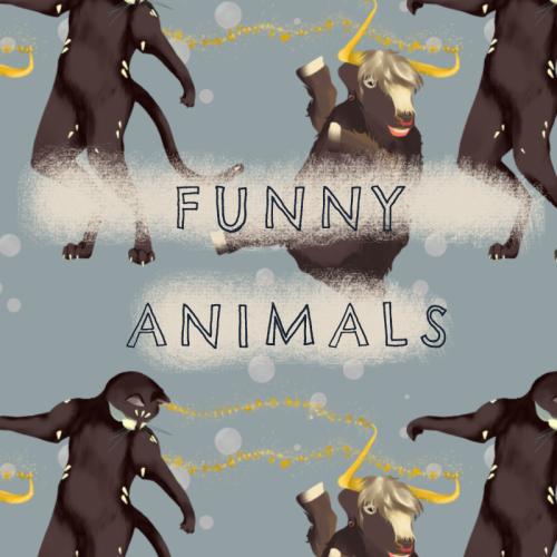 Funny-Animals