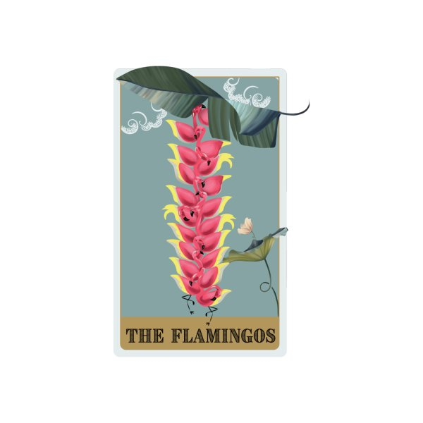 image for The Flamingos