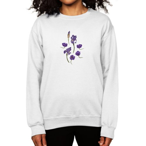 image for Purple flowers