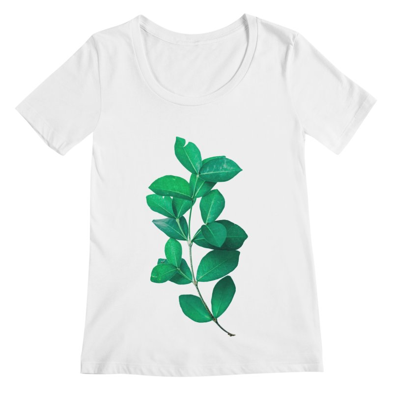 Green Leaves Women's Scoopneck by KUI1981