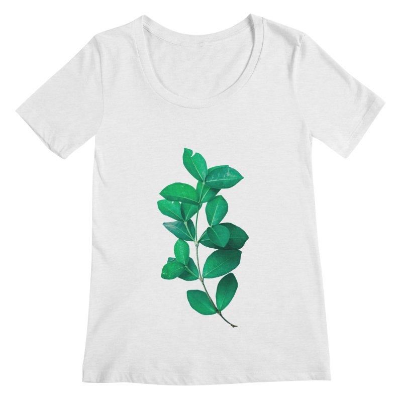 Green Leaves Women's Scoopneck by KUI1981
