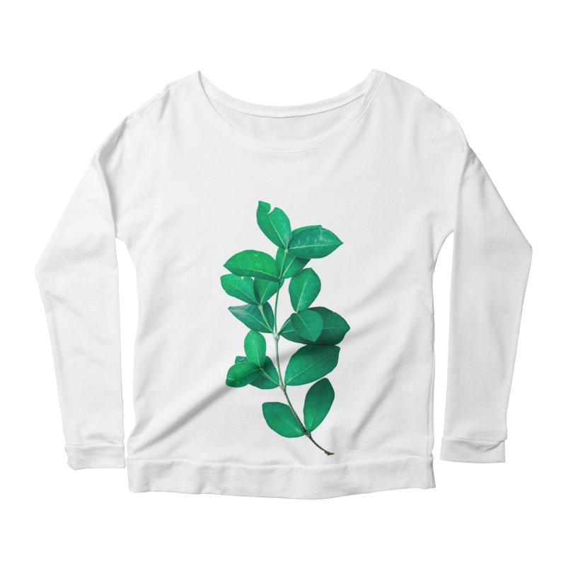Green Leaves Women's Longsleeve Scoopneck  by KUI1981