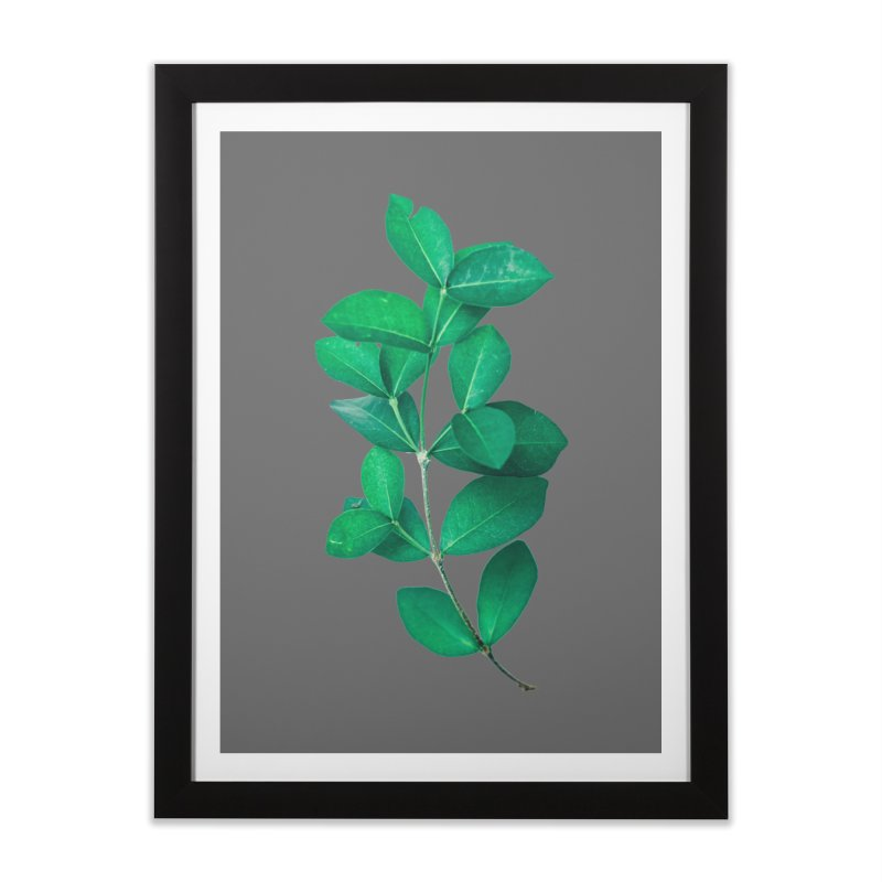 Green Leaves Home Framed Fine Art Print by KUI1981