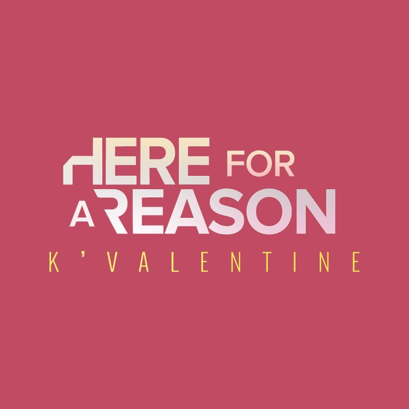 HERE FOR A REASON Accessories Notebook by K'Valentine's Artist Shop