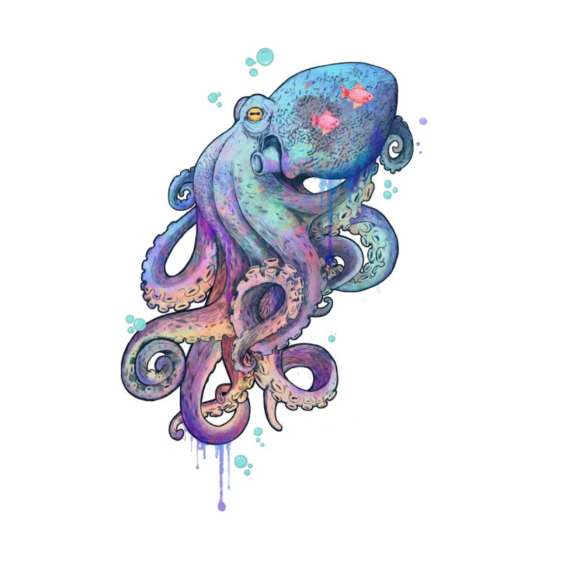 Octopus None  by lauragraves's Artist Shop