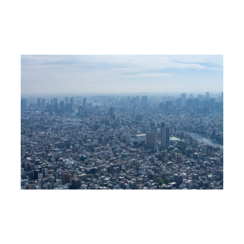Tokyo from Above by leff.photo