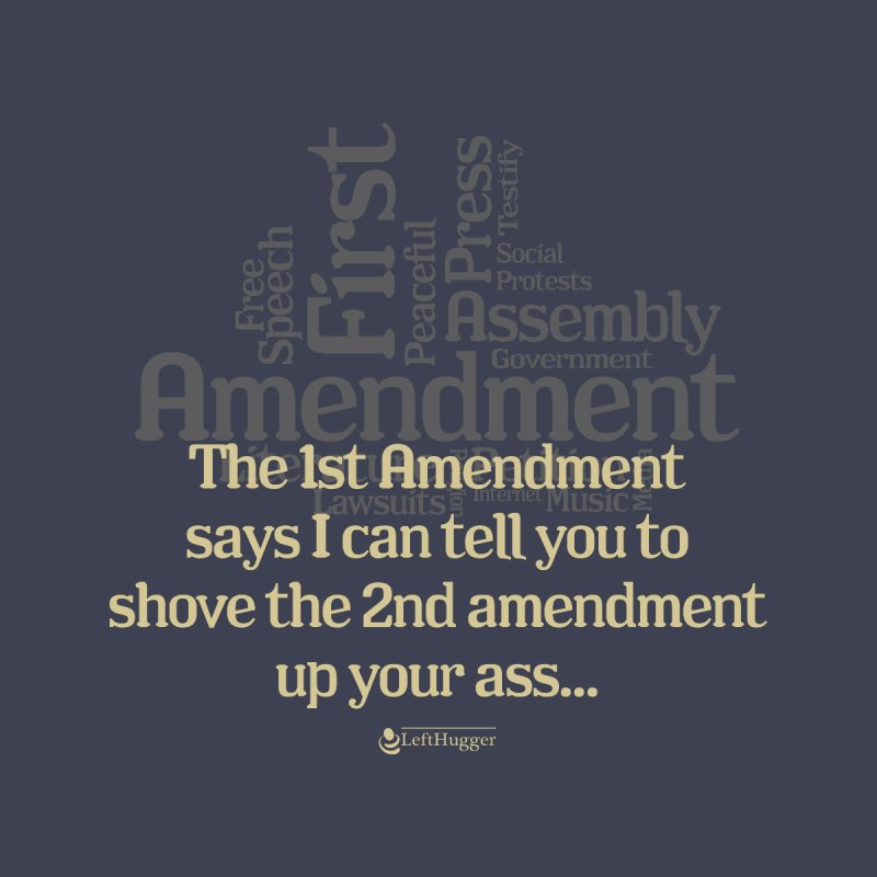 The 1st Amendment Women's T-Shirt by Lefthugger