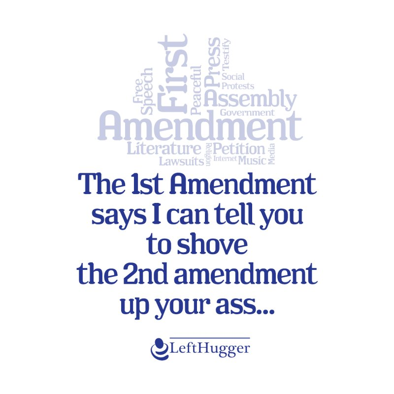 Shove the 2nd Amendment by Lefthugger