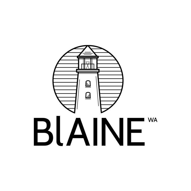 Blaine Lighthouse Black Kids T-Shirt by Life Lurking's Artist Shop
