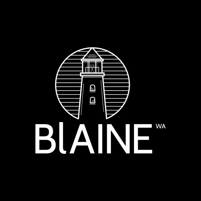 Blaine Lighthouse White Kids T-Shirt by Life Lurking's Artist Shop