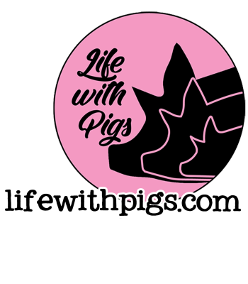 lifewithpigs's Artist Shop Logo
