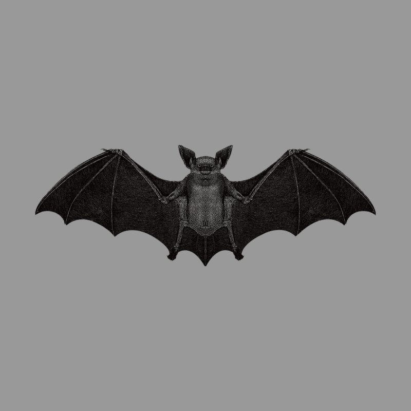 BAT by likeshirts's Artist Shop