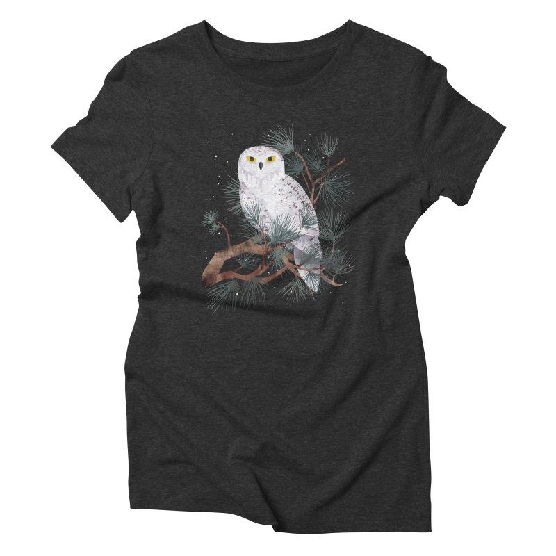 Snowy Women's Triblend T-shirt by Littleclyde