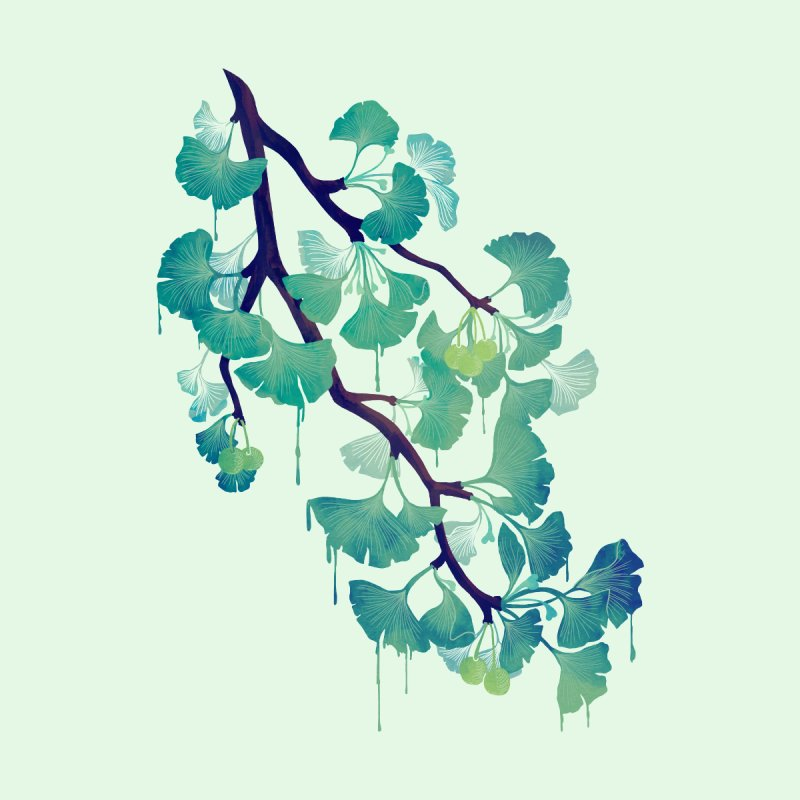 O Ginkgo (in Green) Home Mounted Aluminum Print by Littleclyde Illustration