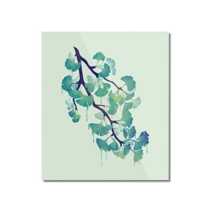 O Ginkgo (in Green) Home Mounted Acrylic Print by Littleclyde Illustration