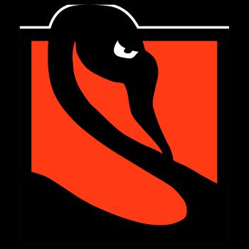 LIVE from Norfolk Street Shop Logo