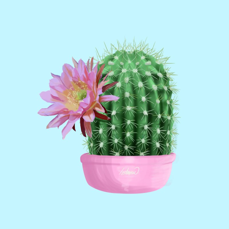 Cactus Flower Serie 1 by lostanaw's Artist Shop