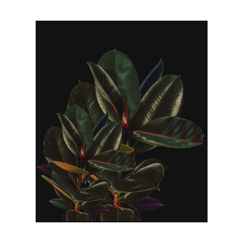 Rubber Leaves Vintage by lostanaw's Artist Shop